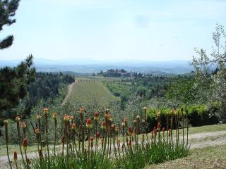 Il Granaio, Castellina In Chianti