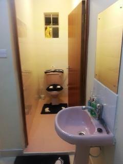 5b. Toilet & Bathroom sink