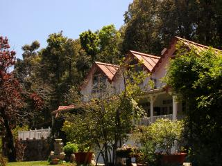 The Cottage by the Woods, Vienna Lodge, Nainital