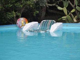 Villa Pia with pool-12+11 pax Recco Cinque Terre