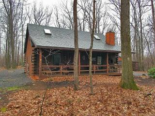 Deep Creek Lake LOG CABIN, Swanton