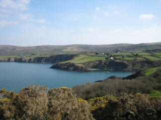 Brodog Court, Fishguard