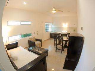 TWO BEDROOM APARTMENT 2 BLOCKS from the BEACH, Playa del Carmen