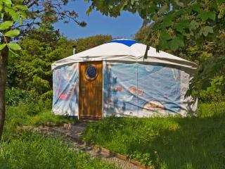 Starlight Yurt- Trellyn, Trefin