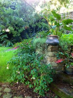 Jardin en septembre