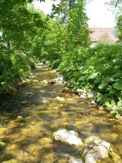 la rivière qui longe la maison