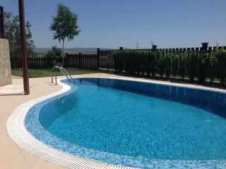 Kidney-Shaped Swimming Pool