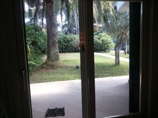 Vista dalla sala