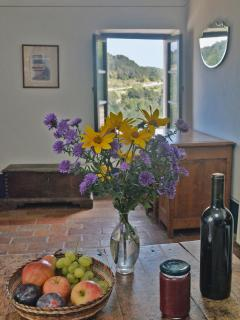 Upon your arrival- fresh fruit and flowers from the garden, with jam and wine made by the host.