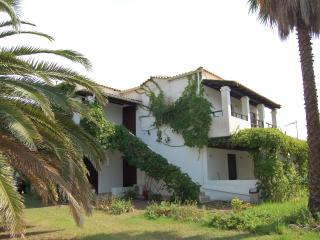 Comfortable studio 150 m away from Beach