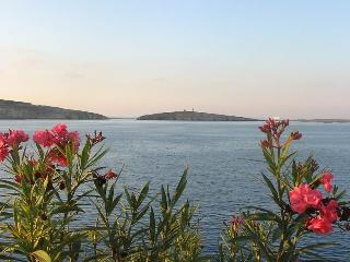 Homestay / Host Family in Saint Paul's Bay, San Pawl il-Baħar (St. Paul's Bay)