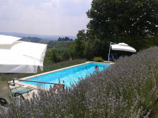 Marvellous Apartment in Chianti. Special Offer