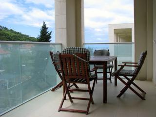 Luxury apartment Dvori Lapad II