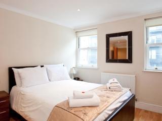 *XMAS & NEW YEAR SALE* Classy Zone 1 Apartments, London