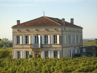 Chateau/villa Saint-Emilion centre, near Bordeaux