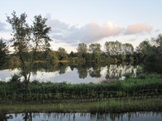 Lower Mill Estate Rental