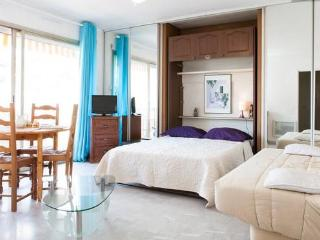 A spacious Studio near Cannes