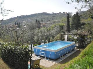 CASA ORTENSIA, Capannori