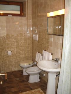 Bathroom with shower and bidet.