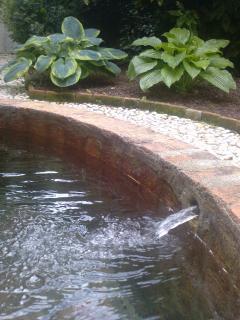 La vasca in giardino