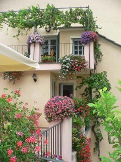 le terrazze fiorite
