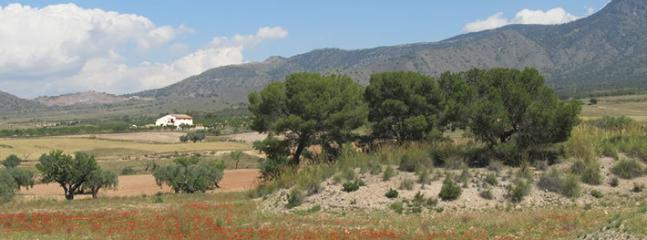 Casa Estrella sits in a gorgeous valley