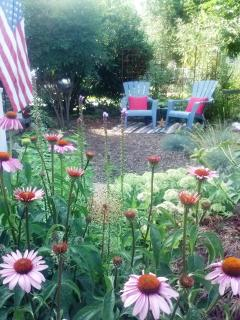 Relaxing spot for gazing at the moon & stars. Butterfly garden. Free Pkg/WIFI.  Dogs Welcome. Fenced
