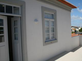 Murtosa house in the Ria de Aveiro near the Beach