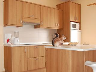 Cheap and Cosy Holiday Apartment in Tenerife Sur, Costa del Silencio