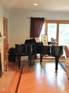 Either you can play the piano or it can play itself!