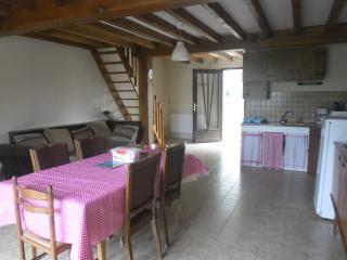 Le bas du gîte avec espace cuisine, salon avec un accès jardin ouvert sur le camping du Petit Lion.