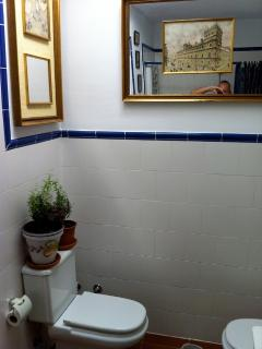 Bathroom, 65 yrs old drawings of xix century ambiance in Salamanca (cathedral,palace of Monterey and