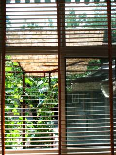 real wood curtain