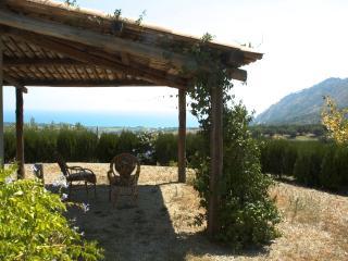 Strombillo: deliziosa villetta tra olivi E MARE, Copanello