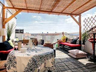 Penthouse duplex with terrace, Praga