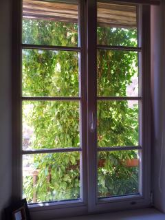 Through a bedroom window
