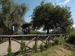 Pezzotta: mare ed  ulivi per una vacanza da sogno, Copanello