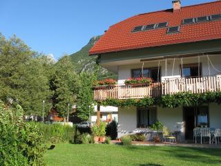 Apartment Flajs - in the garden