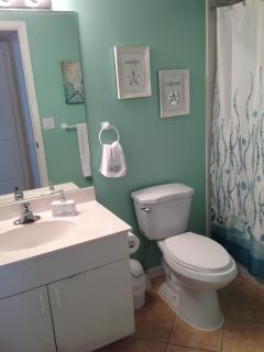 2nd Bathroom - Recent Update