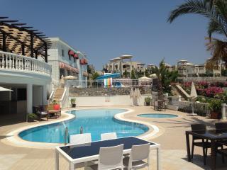 Our Restaurant & Pub Bar swimming pool