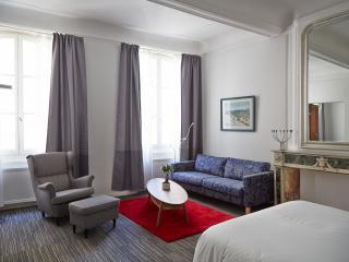appartement de luxe 1ch Arles-centre historique