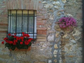 tipico casale in pietra ristrutturato circondato dal verde a km 80 da Roma