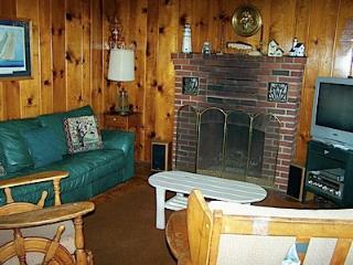 Knotty pine living room