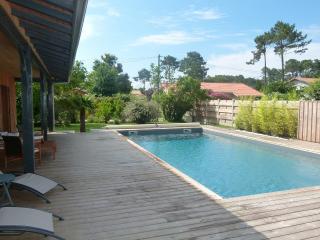 Maison bois look Cabane du Bassin, piscine privée , grande terrasse exposée Sud
