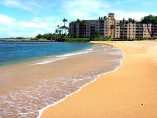 Awesome Oceanfront , Kihei Maui,1 bed/1bath,4th fl