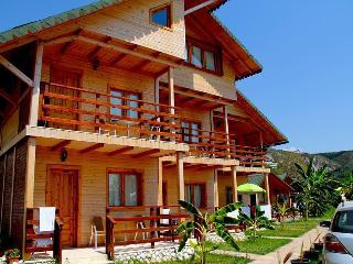 Vila druri Dhermi