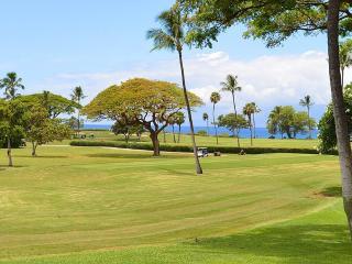 Maui Eldorado: Maui Condo G109, Ka'anapali