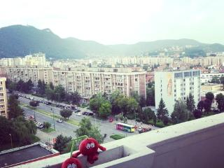 Amazing View in amazing crib, Brasov