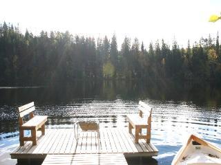 Cottage Antis, Mikkeli, Halmeniemi