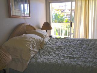 NEW SPECIALS! OCEAN VIEW, SHORT WALK TO THE BEACH!!!, Koloa